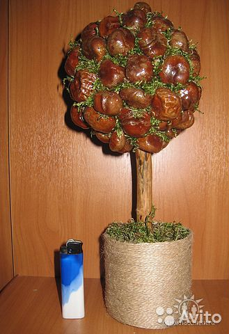 Дерево счастья из каштанов своими руками