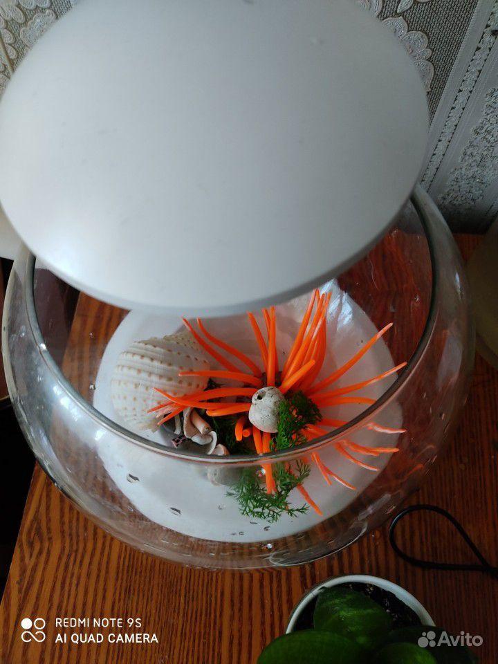Аквариум круглый tetra cascade globe купить на Зозу.ру - фотография № 3