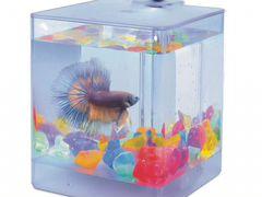 Aqua box 1.3л для петушка