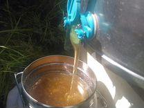 Мёд разнотравье Северо-Казахстанской области