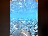 Фон для аквариума 35х45 см